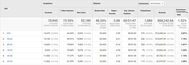 conversions by demographics Conversion Rate Optimization Audits