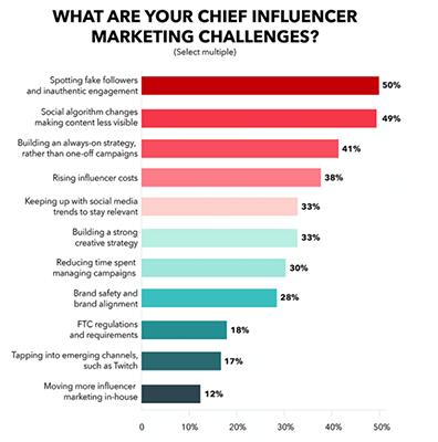 Influencer Statistics 7